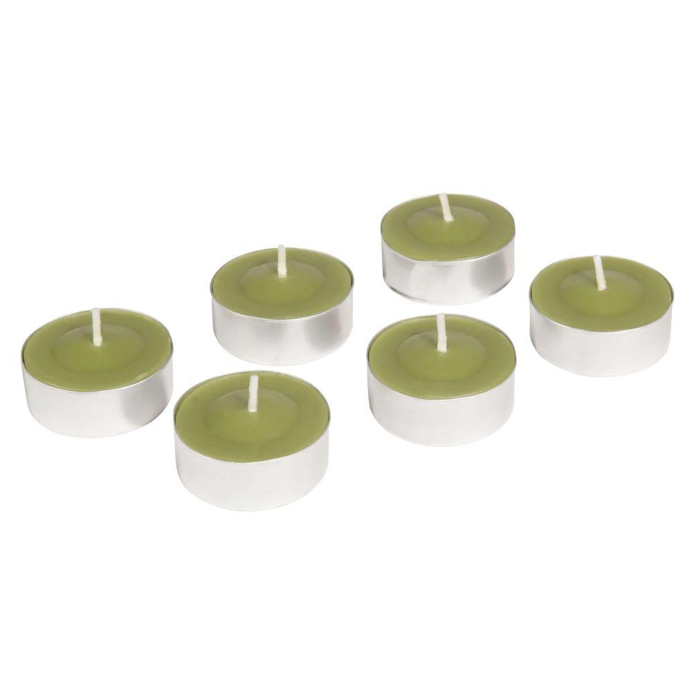 6 bougies coupe verte D 12 cm