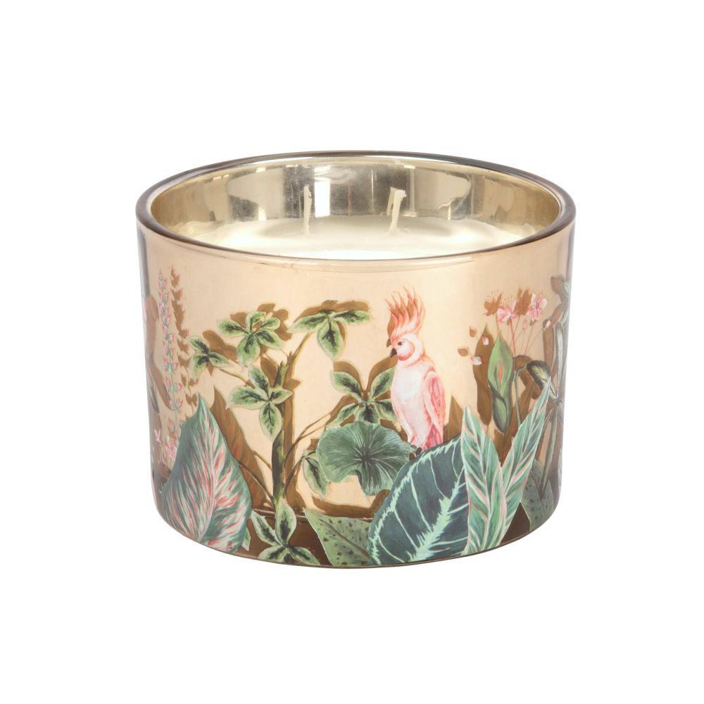Bougie parfumée en verre motif jungle rose et vert
