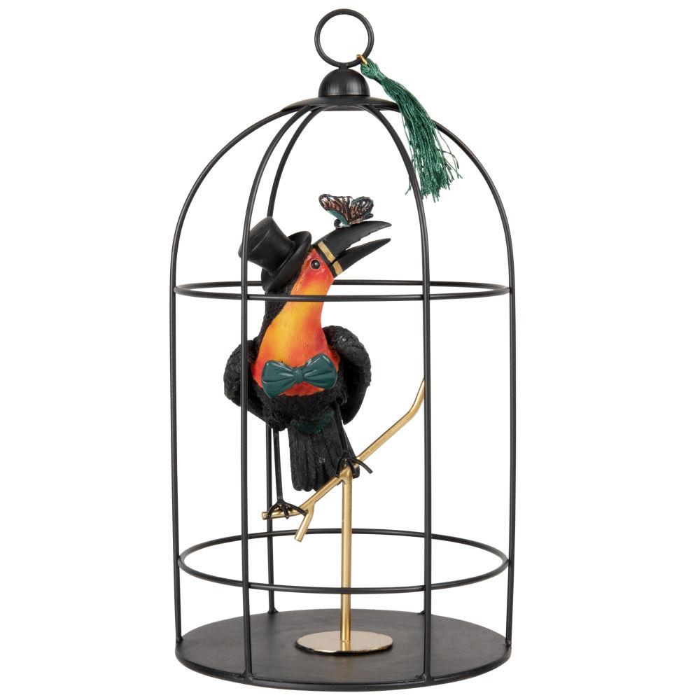 Cage en métal noir et toucan orange, noir et vert