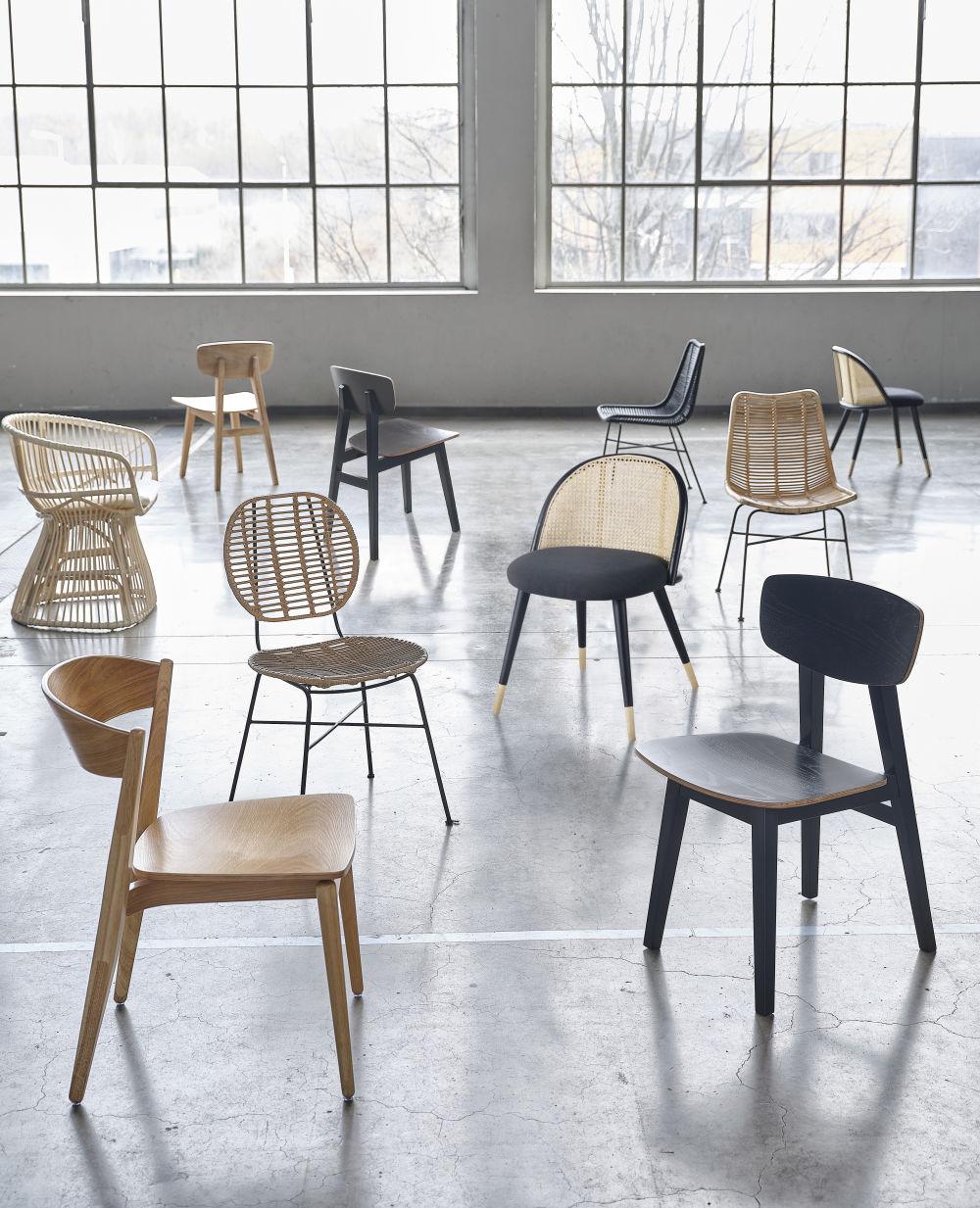Chaise noire et hévéa