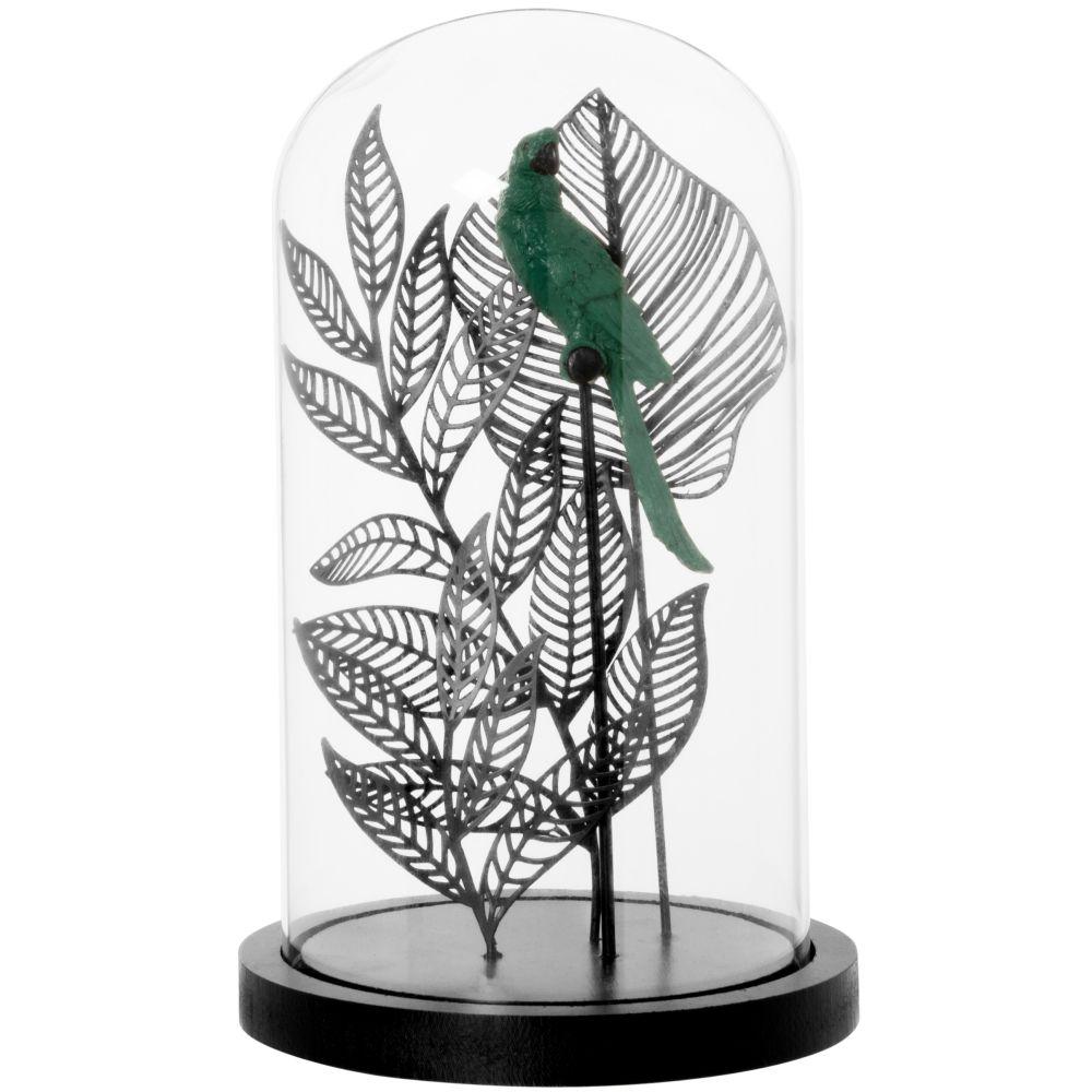 Cloche en verre, perroquet bleu et feuilles en fer noir