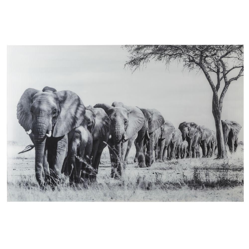 Déco murale en Plexiglas® imprimé éléphants 150x100 (photo)