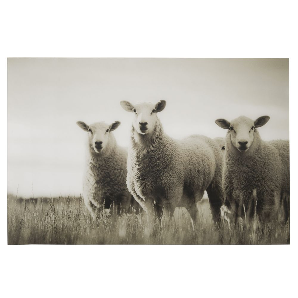 Déco murale en Plexiglas® imprimé moutons 120x80 (photo)