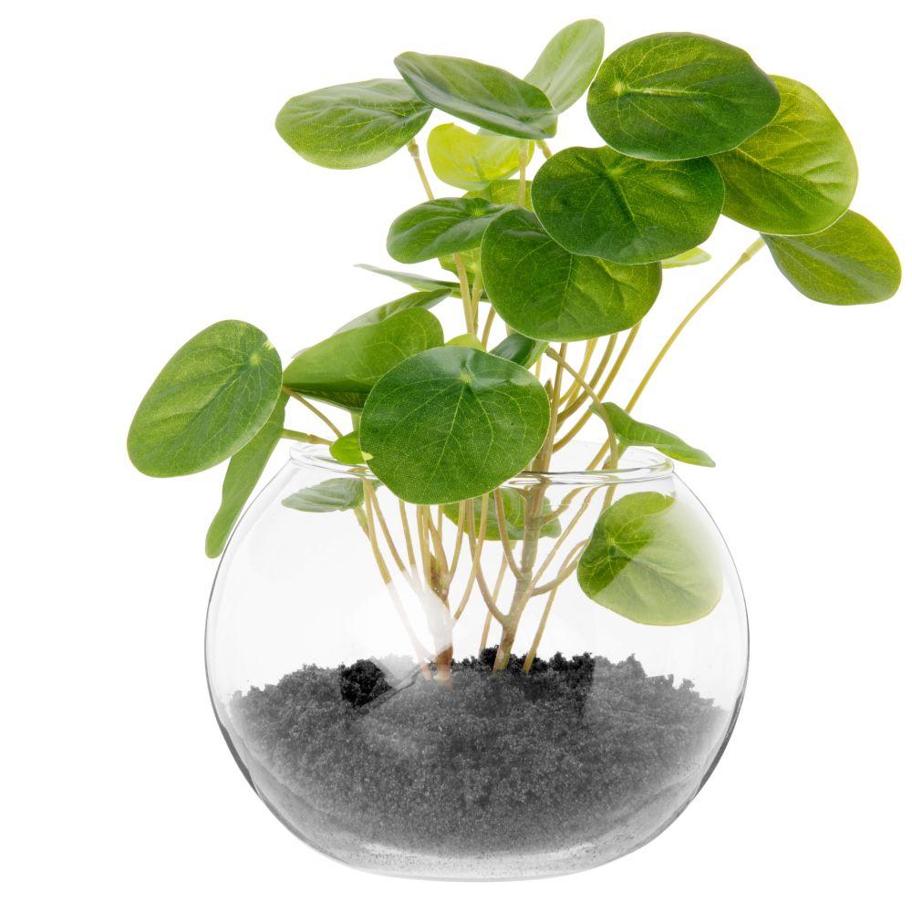 Eucalyptus artificiel pot en verre