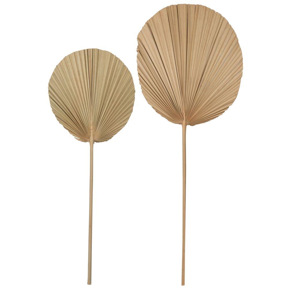 Feuilles de palmier séchées (x2)