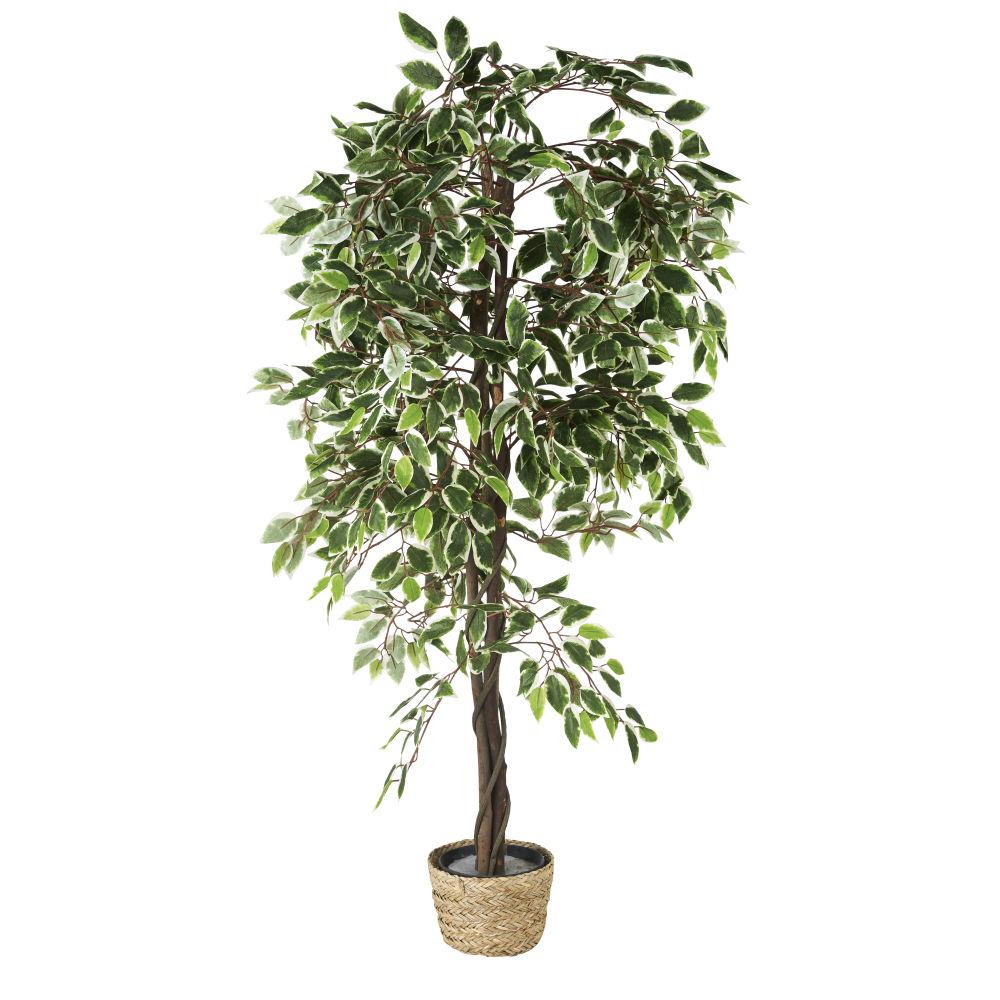 Ficus artificiel pot en fibre végétale H167