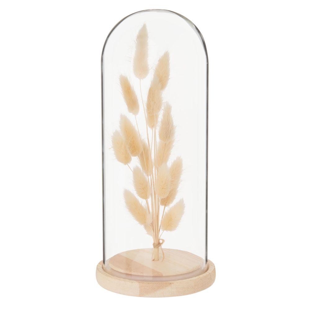 Fleurs séchées sous cloche en verre et pin H25