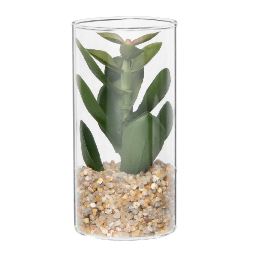 Plante grasse artificielle pot en verre haut
