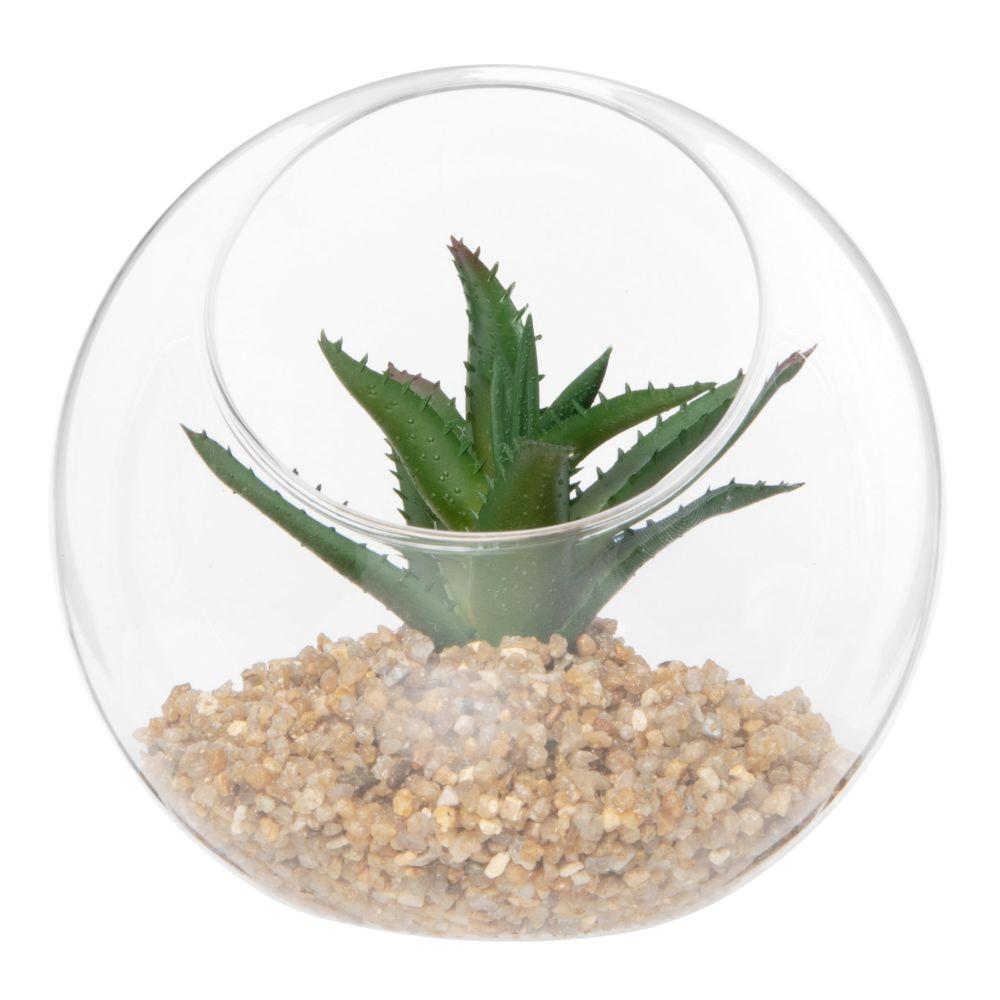 Plante grasse artificielle pot en verre rond