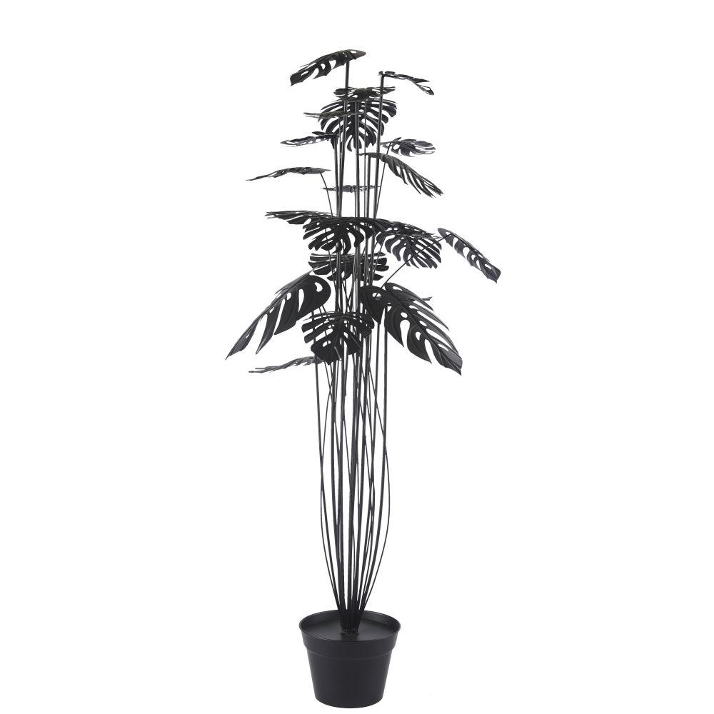 Plante monstera en métal noir H152