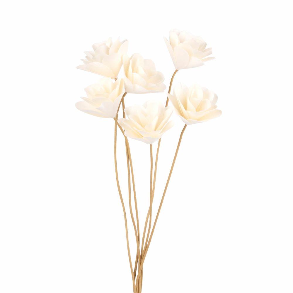 Roses blanches en papier