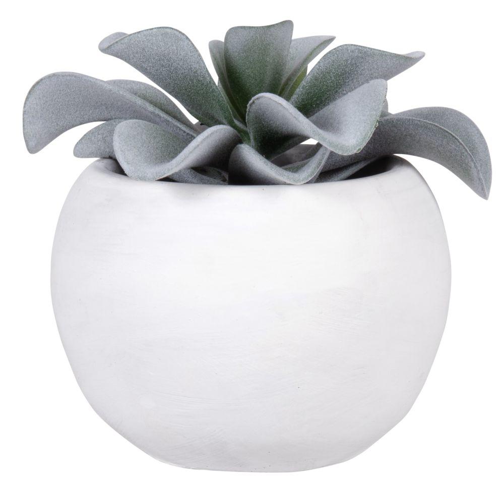 Succulente artificielle pot blanc