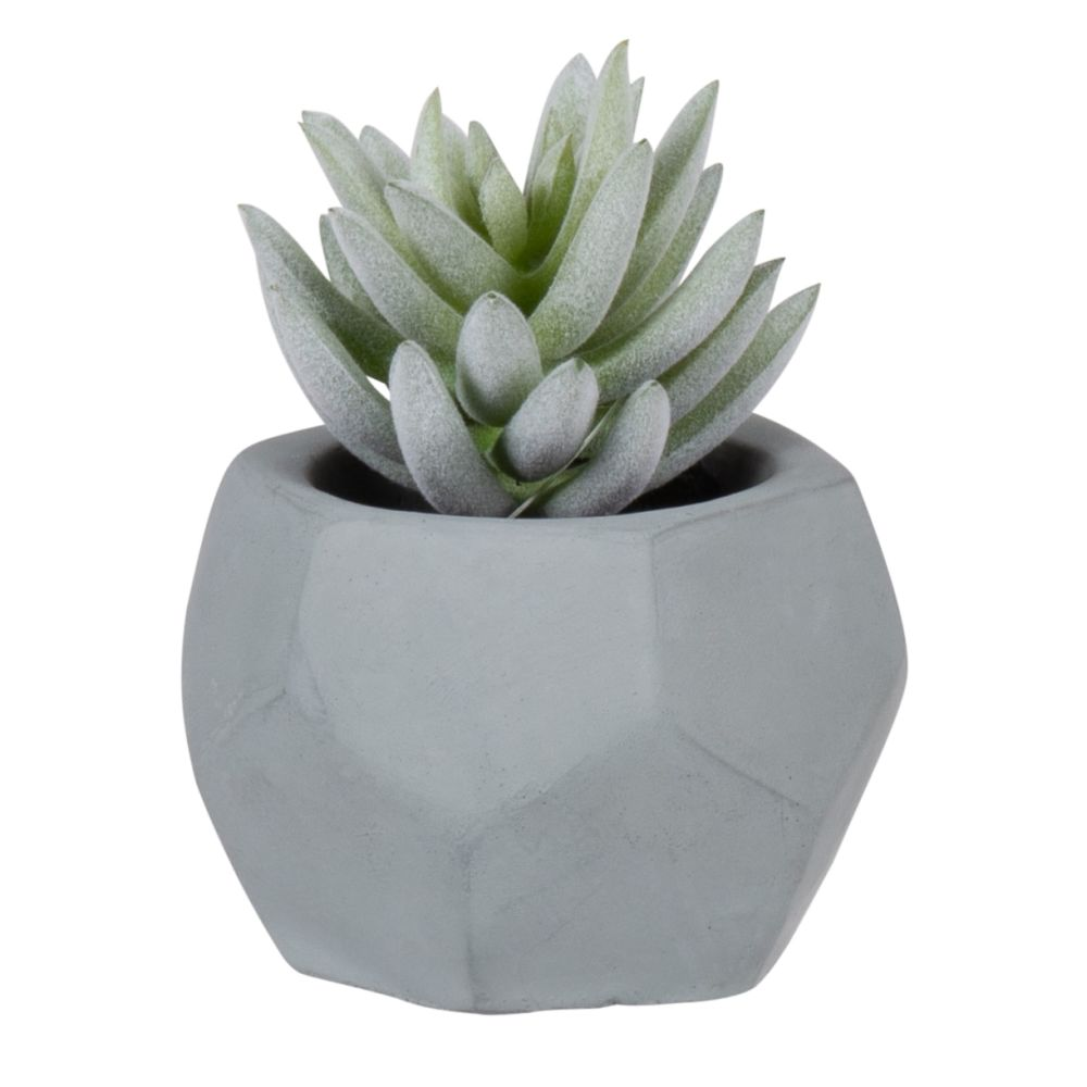 Succulente artificielle pot bleu