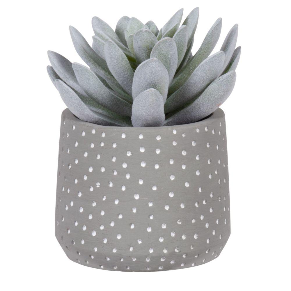 Succulente artificielle pot gris motifs à pois