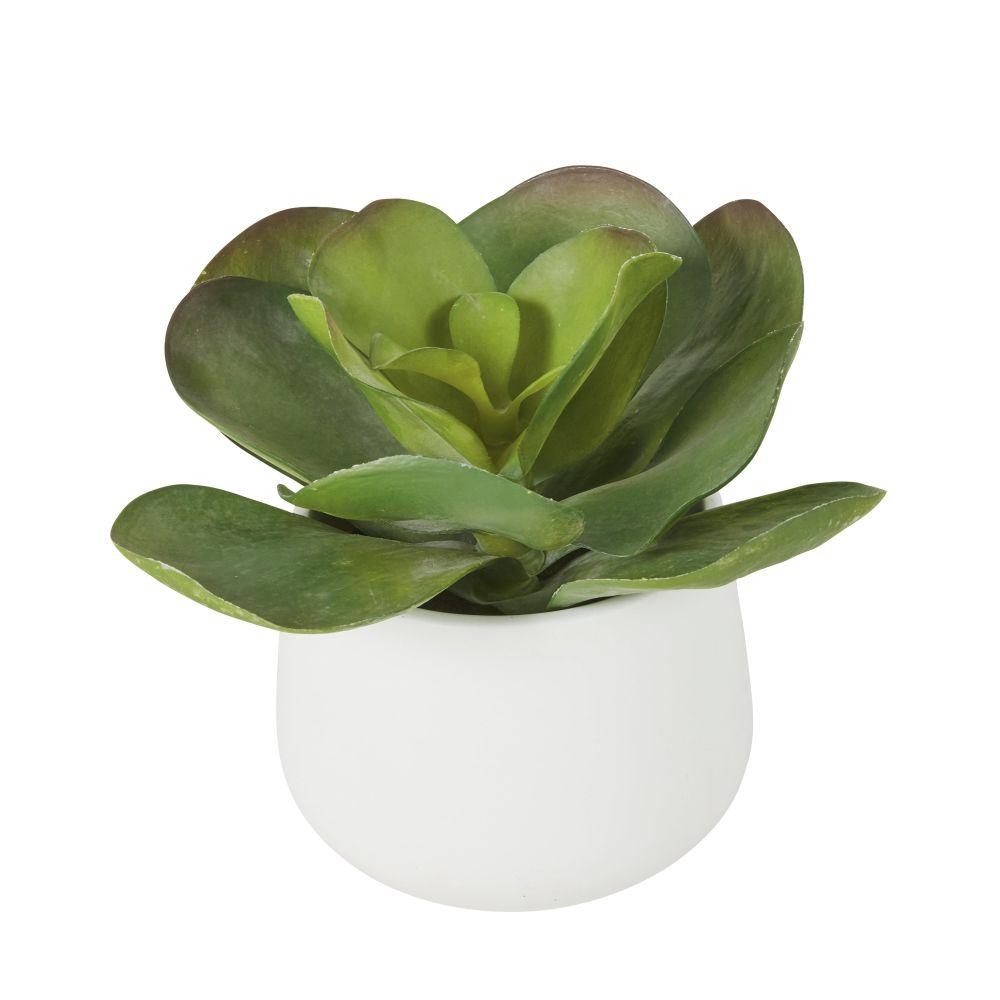 Succulente artificielle verte pot blanc