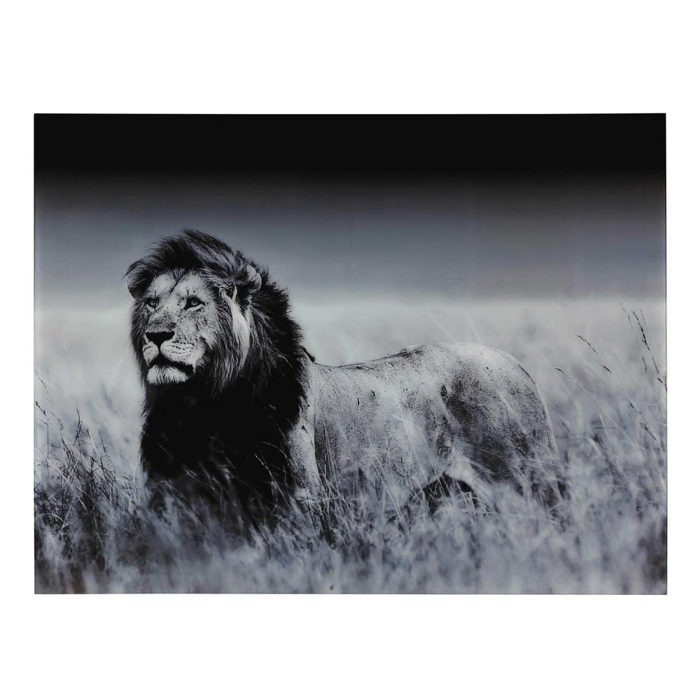 Tableau Lion En Plexiglas® 161x123 Machaka