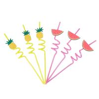 6 pailles fruits multicolores