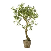 OLEA - Artificial Olive Tree and Woven Rattan Pot H153