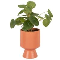 Artificial pilea and terracotta ceramic pot