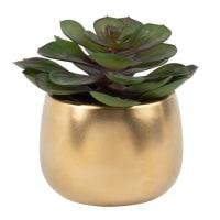 Artificial Succulent in Gold Ceramic Planter