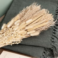 PAMPA - Boeket van beige droogbloemen