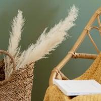 Lotto di 2 - Bouquet di Pampas essiccati