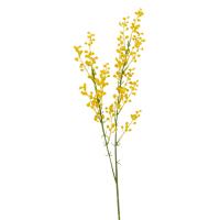 Branche artificielle Mimosa