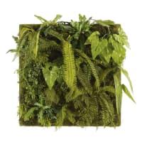 BAHIHIA - Cuadro vegetal con plantas artificiales 100x100