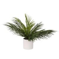 Mini palma artificiale con vaso bianco