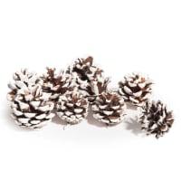 Lote de 3 - Saquinho com pinhas efeito neve