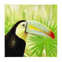 Toile toucan 90 x 90 cm Paco
