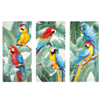 Trittico tele pappagalli, 270x190 Tropical Exotic