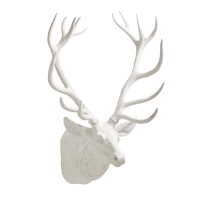 Trofeo da parete testa di cervo bianco, 91x76 cm Alaska