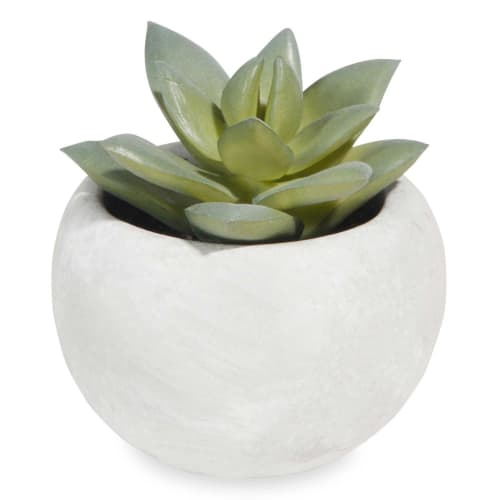 Mini Pianta Succulenta Artificiale In Vaso by