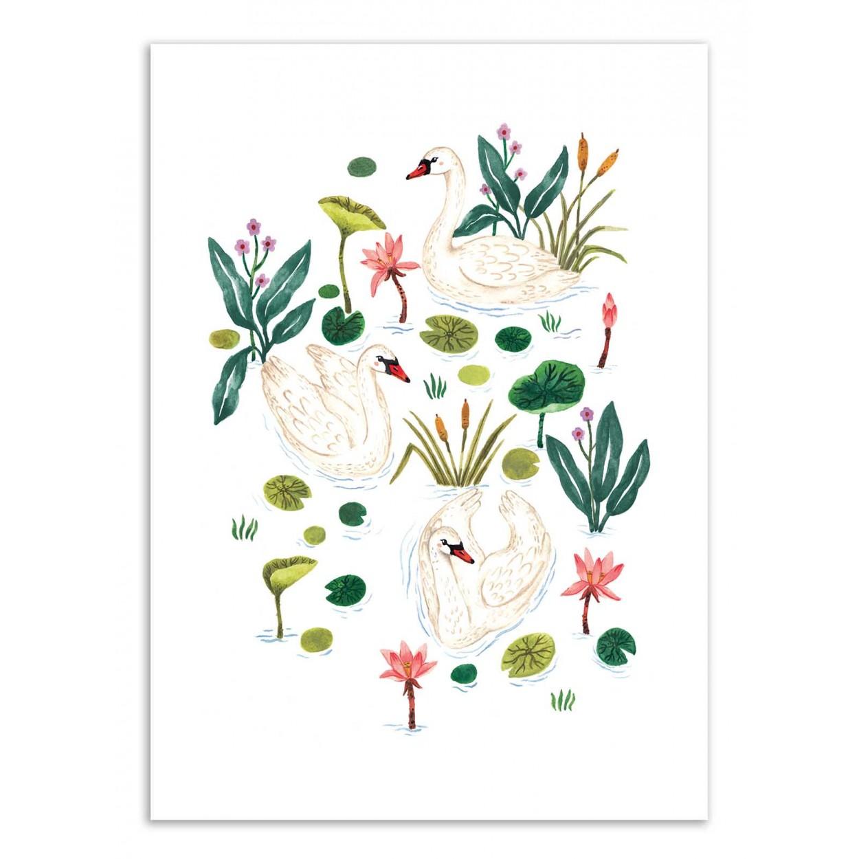 SWAN - Affiche d'art 50 x 70 cm