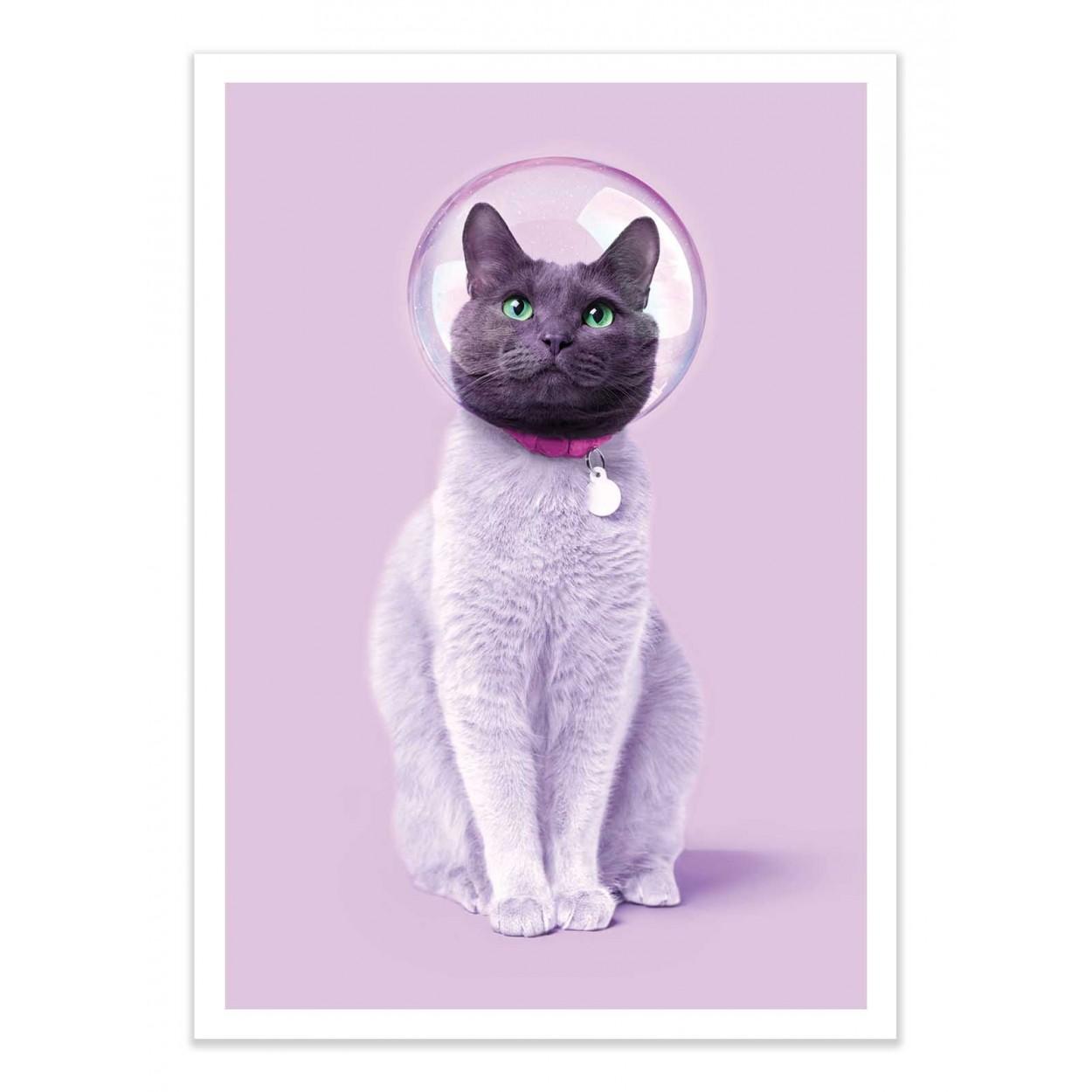 SPACE CAT - Affiche d'art 50 x 70 cm