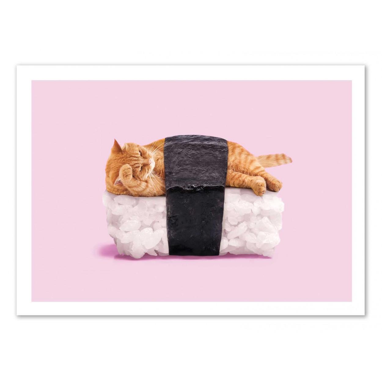 SUSHI CAT - Affiche d'art 50 x 70 cm
