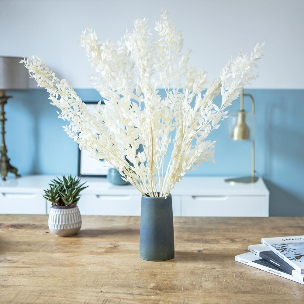 Botte de fleurs séchées Ruscus blanc environ 10 tiges
