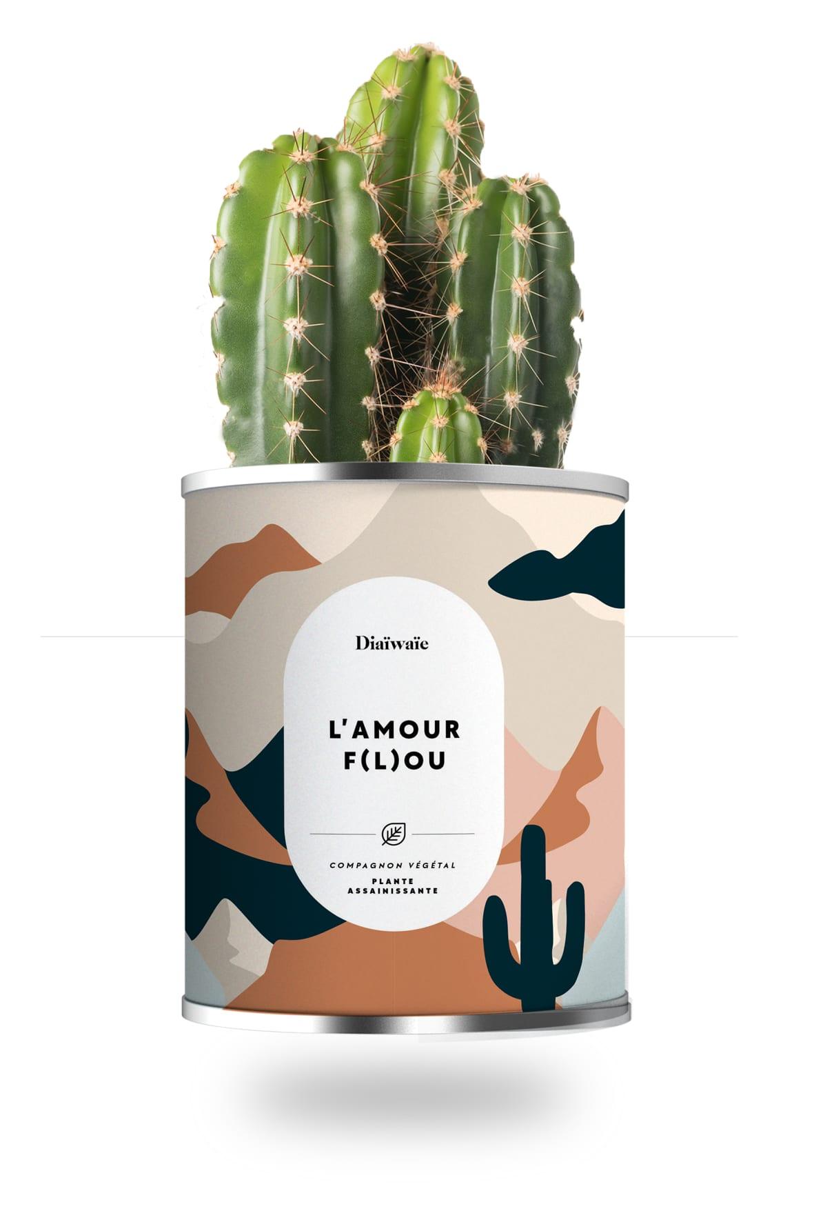 Cactus ou plante pot grand modèle l'amour f(l)ou