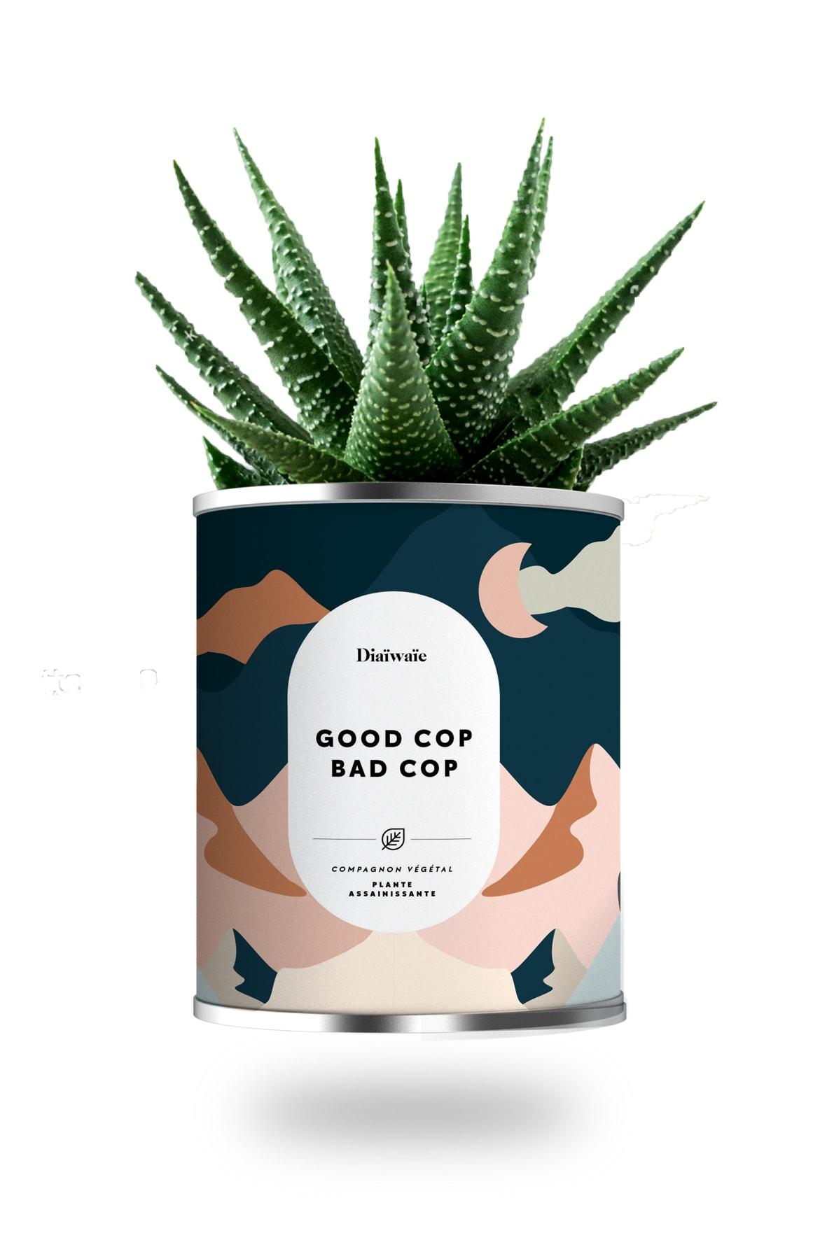 Cactus ou plante pot grand modèle good cop bad cop