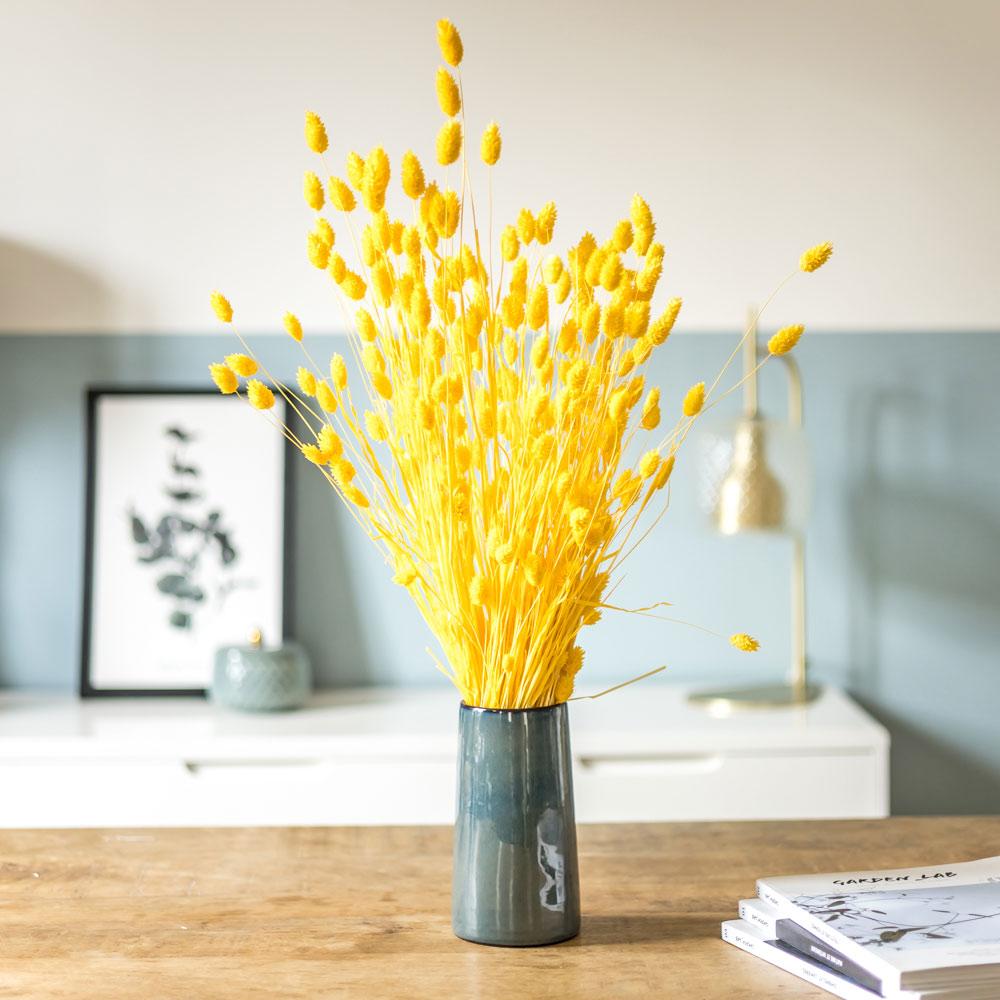Botte de fleurs séchées Phalaris jaune