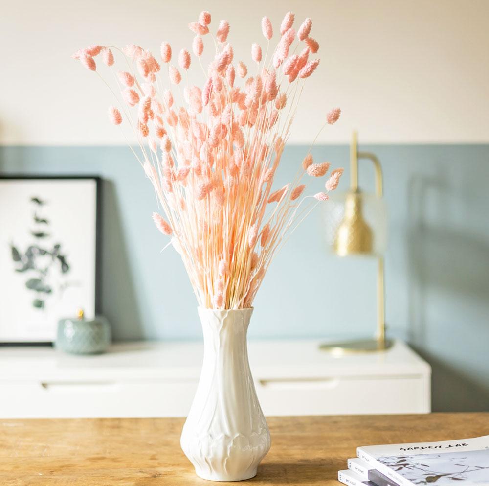 Botte de fleurs séchées Phalaris rose