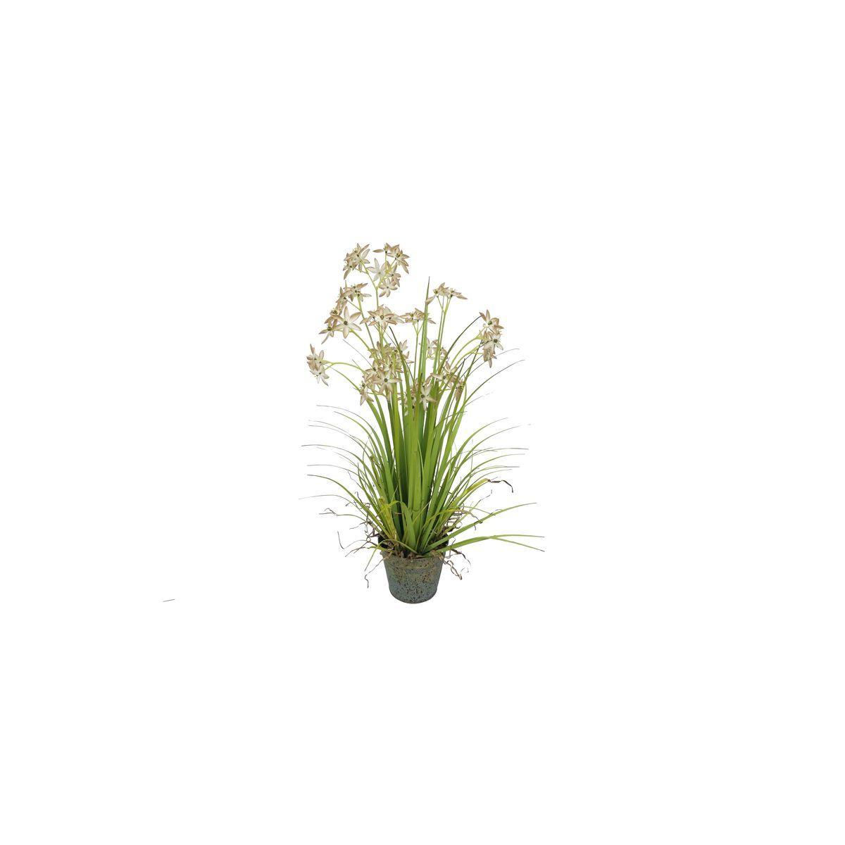 Allium de Naples artificiel fleurs beige pot zinc H78cm