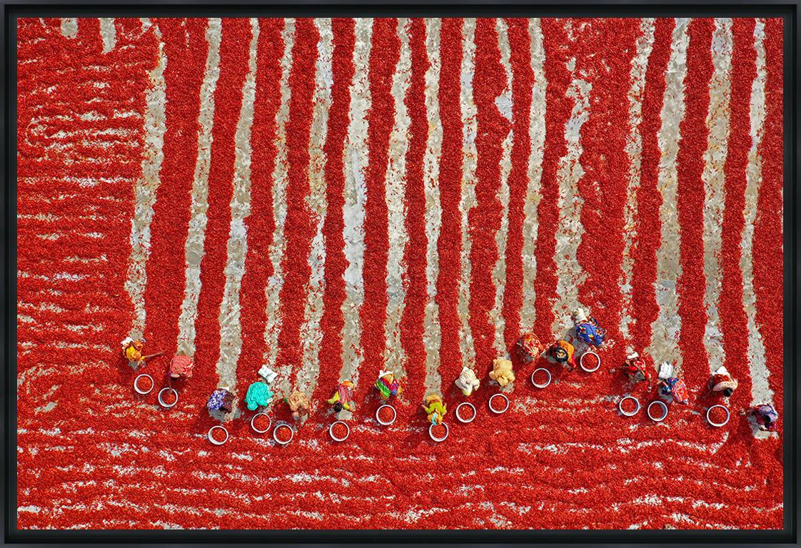 SÉCHAGE DES PIMENTS ROUGES - Photo encadrée de Pixopolitan 90x60 cm