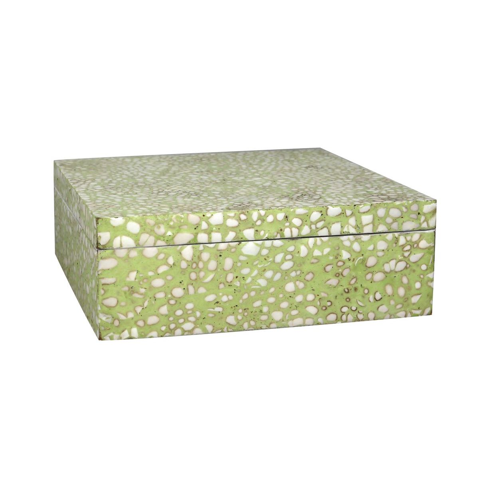 Boîte en coquille d'œuf vert