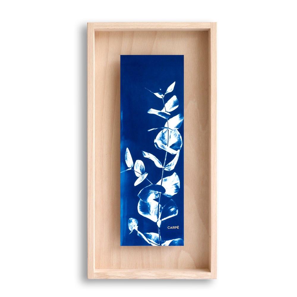 Cadre en bois cyanotype eucalyptus 40x20cm