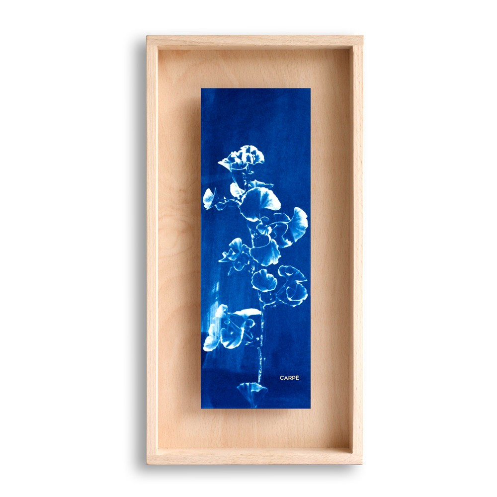 Cadre en bois cyanotype gingko 40x20cm