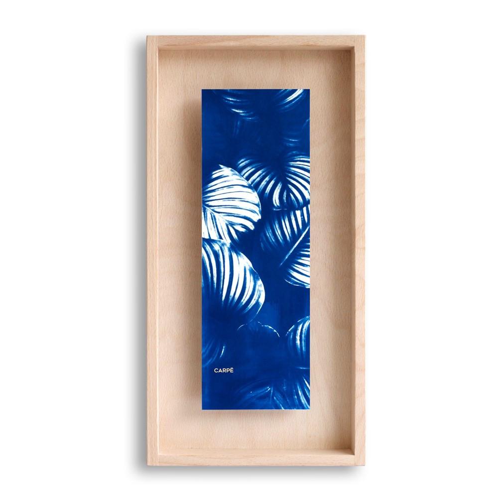 Cadre en bois cyanotype calathea 40x20cm