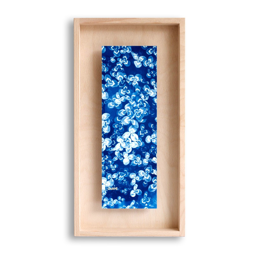 Cadre en bois cyanotype trèfle 40x20cm