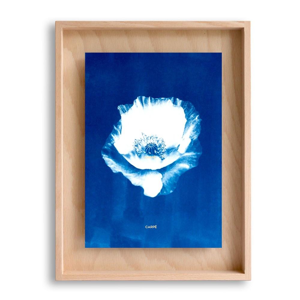 Cadre en bois cyanotype pavot 40x30cm